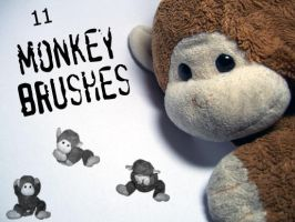 monkey brushes by Lautumschrift