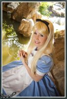alice 02 by findenenmacil