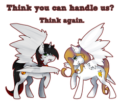 Contest Entry: Fire Blaze and Rapidity Charge by Raponee