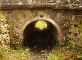 Sheep Tunnel by TheOldGoat1955