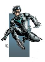 Nightwing by AdryLavi