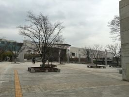 National Museum of Korea  5 by rtas13524