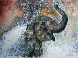 Elephant by danuta50