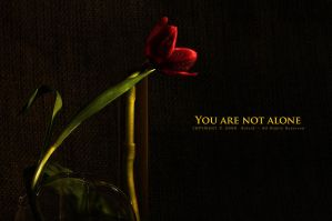 You are not alone by OmarAziz