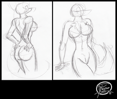 Anthro Figure Sketch Layouts by UncleScooter