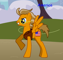 America pony by CaliforniaHunt24