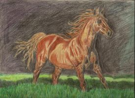 """""""Copper-Penny horse"""" XD by PansyQuail"""