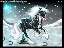 Snow storm by TowaTheStallion45