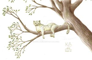 Treecat by Scellanis
