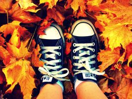 Leaves and Converse by xxROBIN