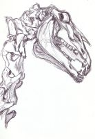 horse skull, reference drawing by Killslay-steelclaw