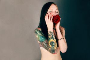 rose III by Anepire69