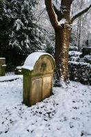 Winter tombstone stock 13 by Malleni-Stock
