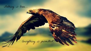Assassin Eagle by PeaceLoveAmazingness