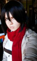 Mikasa Preview by BlanxMisa