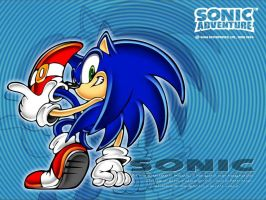 Sonic Adventure: Sonic the Hedgehog by SpeedTheHedgehog101
