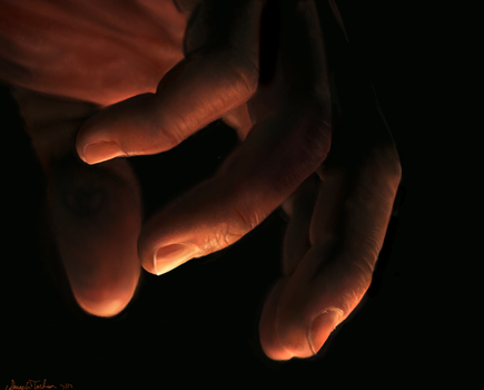 Hand Study by AmandaTolleson