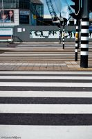Zebra Crossing by Casslass