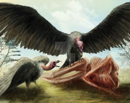 vultures by chillymania