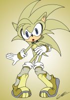 Surge the Hedgehog by EUAN-THE-ECHIDHOG