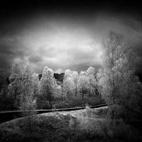 Trossachs infrared by MichiLauke