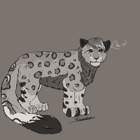 Kitty Design for felw Contest Entry by Allixi