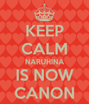 NaruHina.....keep calm by wilky700