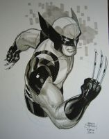 Wolverine Kapow! 2012 by TerryDodson