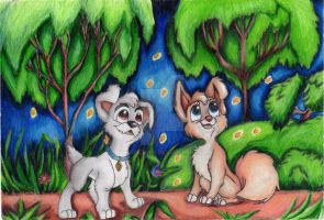 Angel x Scamp from Lady and the Tramp 2 by FokkoChan