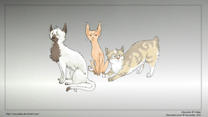 Cats by Varicellae