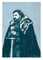 Winter is Coming by theartful-dodge