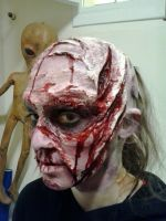 Zombie Make up by MirrorDancer