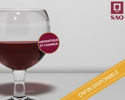 C4D - Wine Glass - SAQ PUB by QuadixStudio