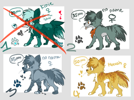 Adoptables! CLOSED by Sunny--San