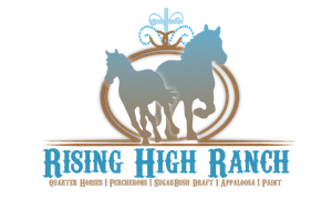 New logo by Rising-High-Ranch