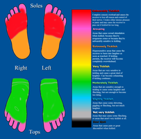 Midnight's tickle chart feet by thescarlethuntress