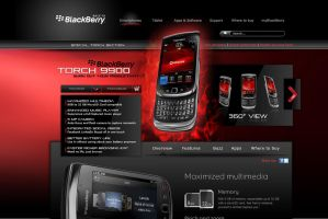 BlackBerry Torch by yiolo