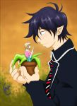 What beautiful flower I found by Iwama-chan
