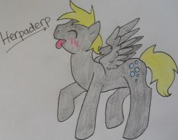 Male Derpy (Herpaderp) by MLP-HatersGonnaHate