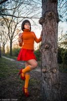 Velma from Scooby Doo cosplay by joulii91
