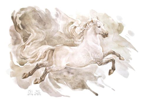 Andalusian in watercolor by Victoria-Poloniae