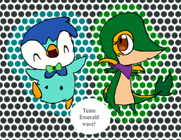 Team Emerald wave by Kat-The-Piplup