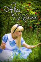 Alice in wonderland by clefchan