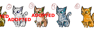Adoptables by Leopardshadow003