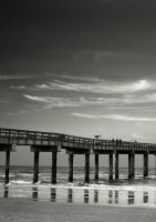 Beach and Pier by sciph