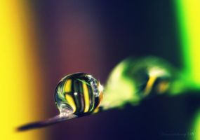 colourful drop... by herryhewy