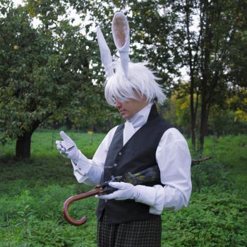 White Rabbit by Evil-Sasha