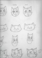 Cat faces by booper101