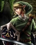 Link - [Twilight princess] by Tipetogi