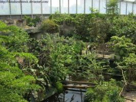 Indoor tropical rainforest 04 by Bloodsoul-Stock
